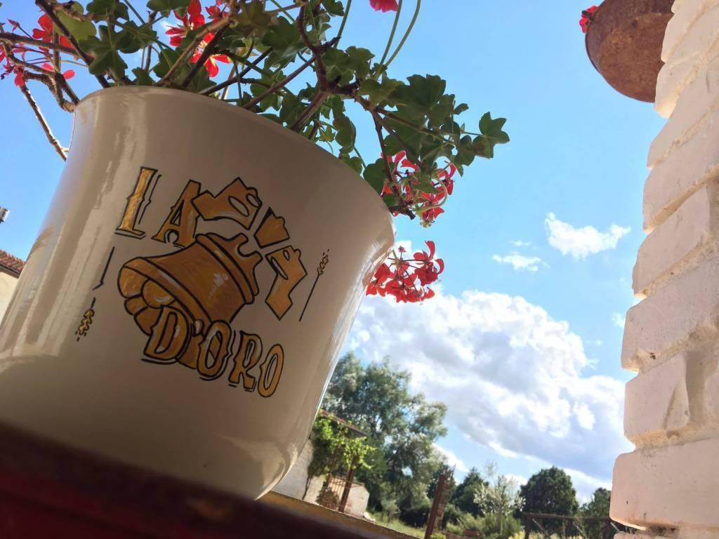 folto di un vaso con il logo de la campana d'oro con dentro dei fiori rossi